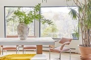 Contemporary dining room with vintage dining chairs, house plants, oversized windows