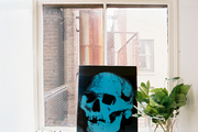 An artwork of a skull propped against a window