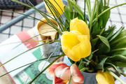 A detail of tulips on a coffee table.