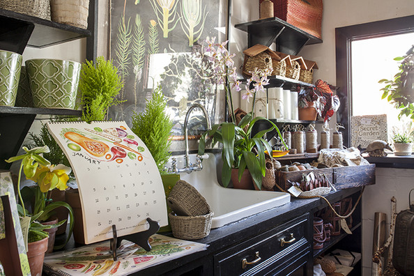 Artist Studio - Houseplants, garden tools, and autumnal clippings on display