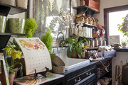 Houseplants, garden tools, and autumnal clippings on display