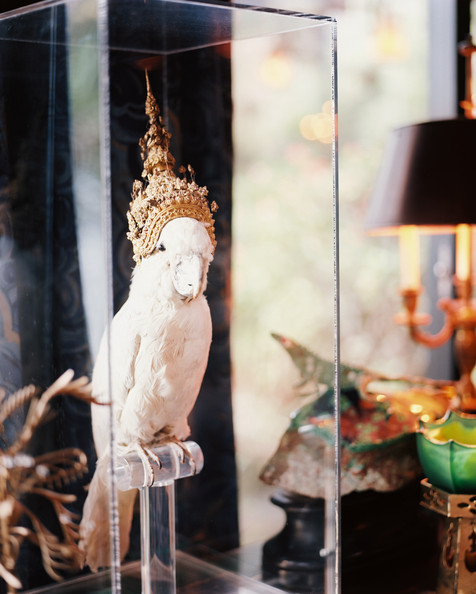 Decor - A stuffed cockatoo wearing a Balinese headdress