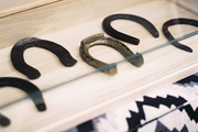 Horseshoes on display