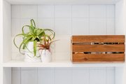 White shelving holds potted plants, crates, and towels.