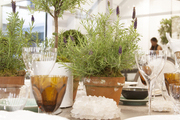 A table setting with plant-filled terra-cotta pots as a centerpiece