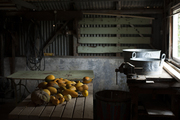 A grouping of gourds in a rustic barn
