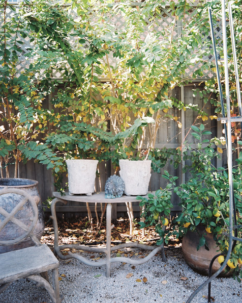 January February 2013 Issue - Potted plants and outdoor furniture in a courtyard