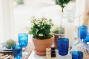 A table set with woven place mats, blue-and-white dishes, and potted plants