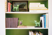 White bookshelves backed with green paint