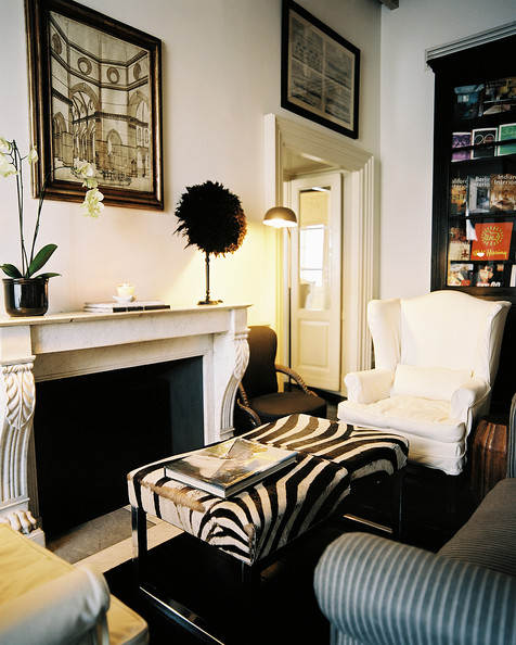 Michele bonan photos 86 of 88 lonny for Living room decorating ideas zebra print