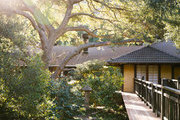 A large tree casts shade over the Golden Door Spa