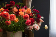 A ceramic urn of ranunculus and a silver vessel of branches in a floral studio.