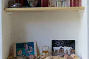 Shelves topped with treasures found at the shore