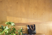 Raw wood wall with bench and plant placed in front of it.