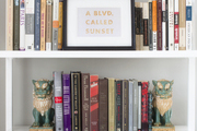 A bookcase with foo dogs