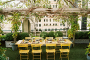 An outdoor dining area with yellow chairs below a vine-covered canopy frame