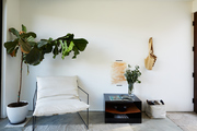 An entryway featuring a chair, fiddle leaf fig, and organizational pieces.