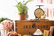 A collection of plants, pastries and miscellaneous vintage-inspired decor