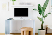 Tall potted plant and white desk in a modern workspace