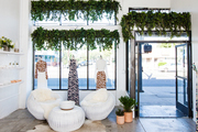 A retail store with hanging plants and white chairs.