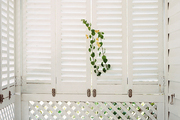 White shutters and trellises on an enclosed porch