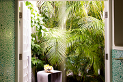A shower with a view to a palm-shaded outdoor area