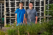 One Kings Lane's Andrew Stewart with a coworker on Irene Edwards's revamped roof