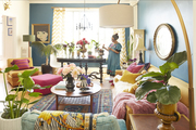 A colorful living space filled with many indoor plants and sunlight.