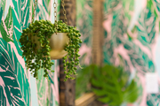 A detail of a hanging plant in a gold pot.