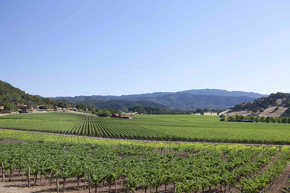 More To Love: A Weekend Escape To Napa Valley