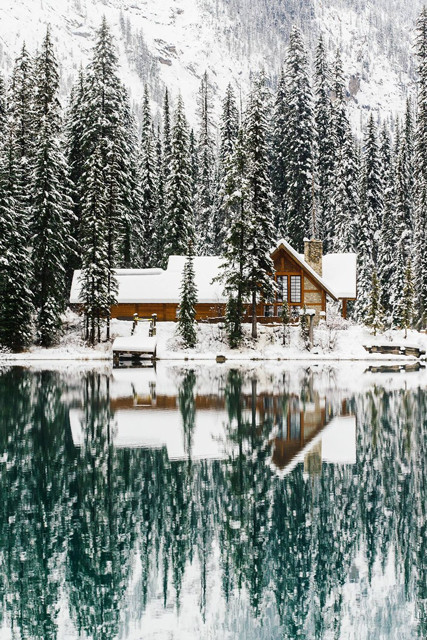 pinterest board of the week cabin in the woods decorating lonny