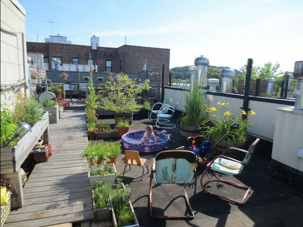 Rooftop Revamp: A Lonny Editor Shares Her Outdoor Makeover!