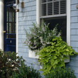 Make A Window Box