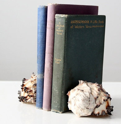 Antique Pastel Book Set