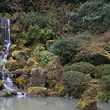 Nature Walk: Portland Japanese Garden