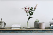 Poshmark Just Made Selling Your Home Decor So Simple