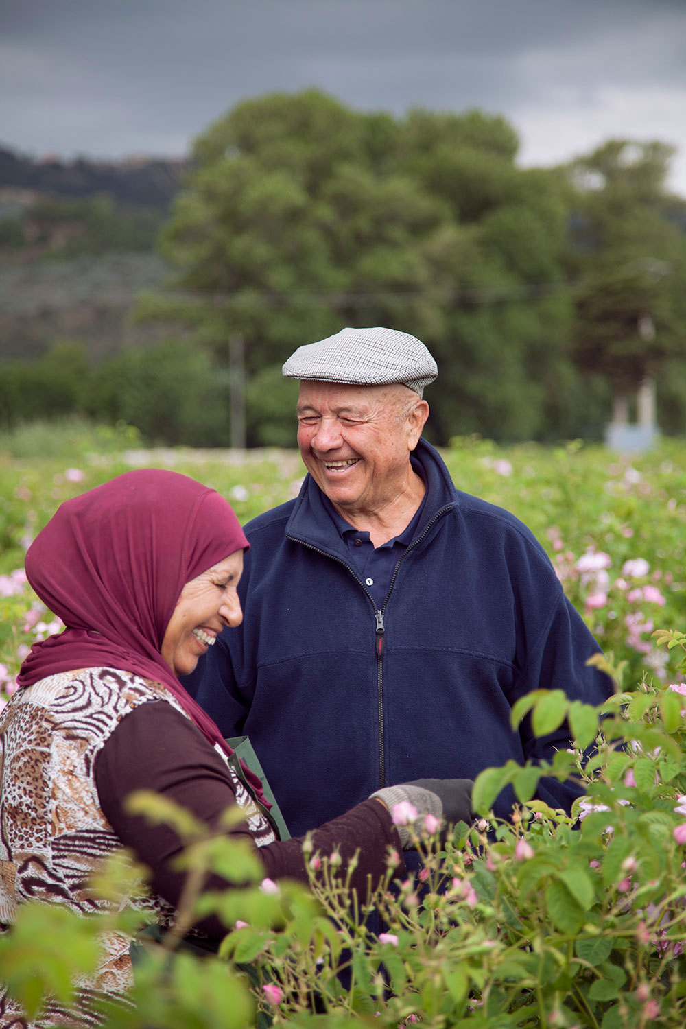 Farm patriarch Joseph Mul with a worker at the rose harvest.