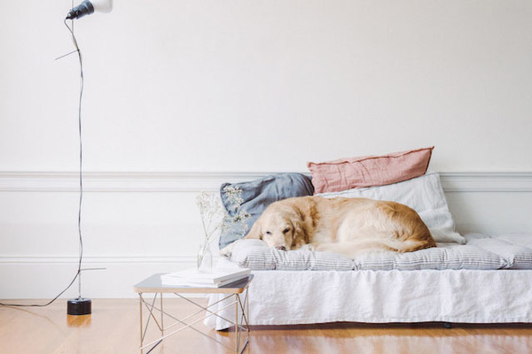 DIY To Try: Daybed Mattress