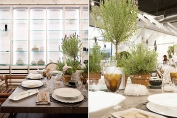 An Affordable Herb Centerpiece
