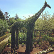 See: Green Animals Topiary Garden