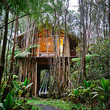 Hawaii Treehouse