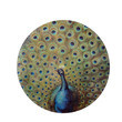 Fanned Peacock Round Platter