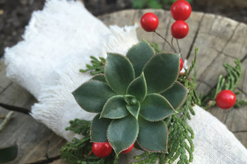 DIY Succulent Napkin Rings for a Modern-Rustic Holiday Table