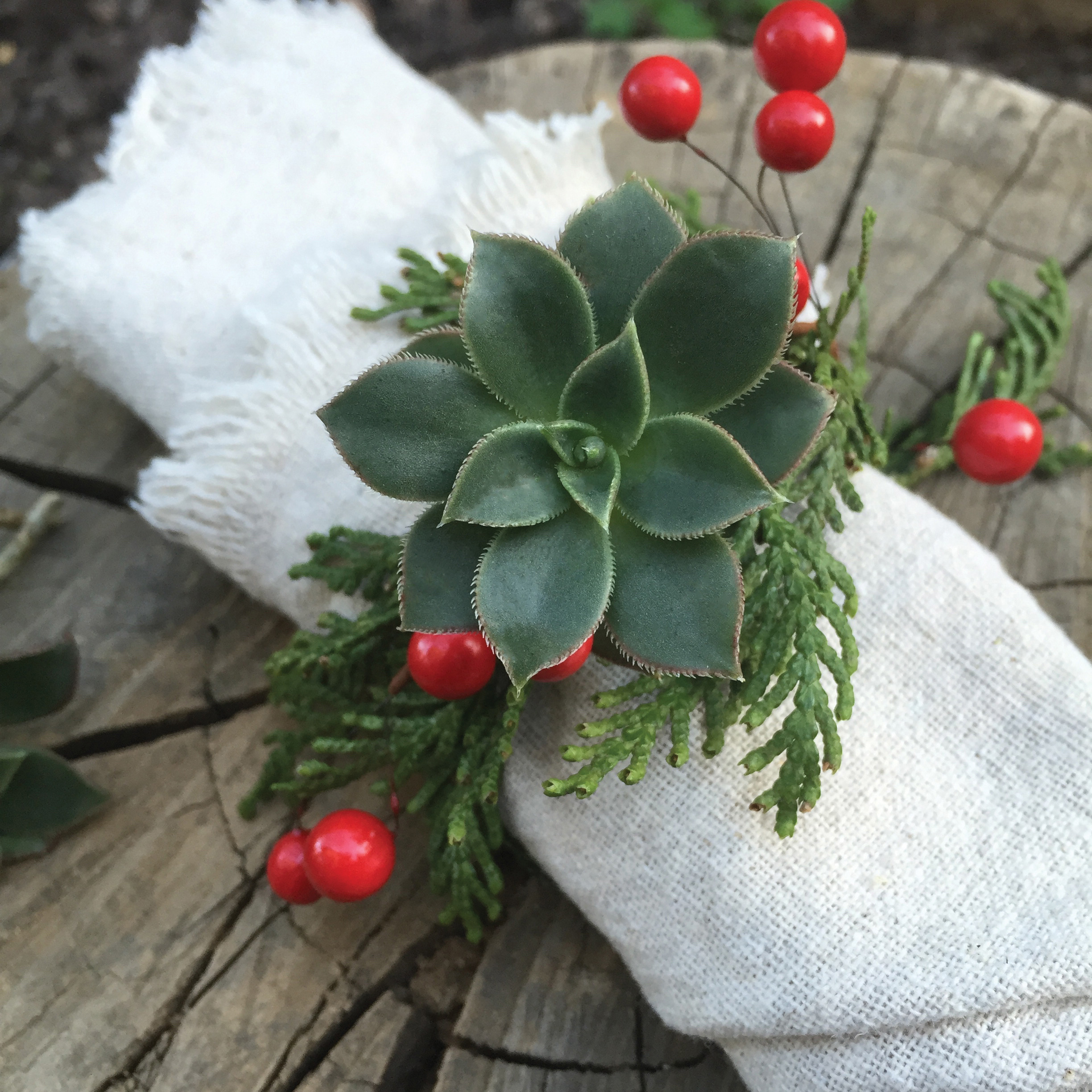 Diy Succulent Napkin Rings For A Modern Rustic Holiday Table Do It Yourself Projects Lonny