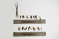 An Easy, Affordable DIY Feather Idea for Your Walls