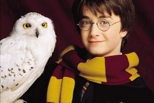 What Pet Would You Bring to Hogwarts?